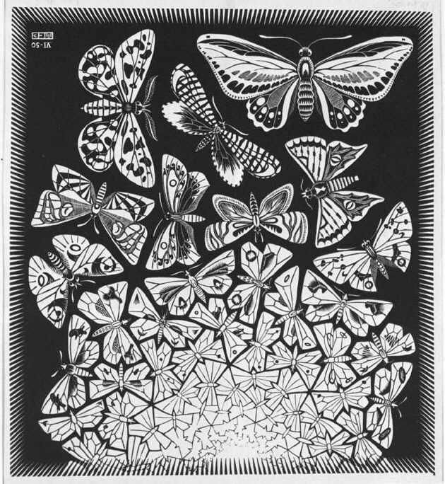 Ce este un paradox? Fluturii lui Escher!