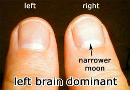 Află care este emisfera dominantă a creierului tău 1