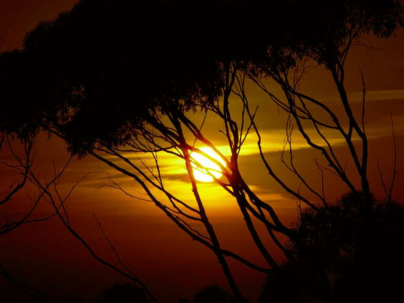 90 Poze cu peisaje - Imagini cu natura pentru sufletul tau 1