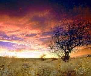 90 Poze cu peisaje - Imagini cu natura pentru sufletul tau 2