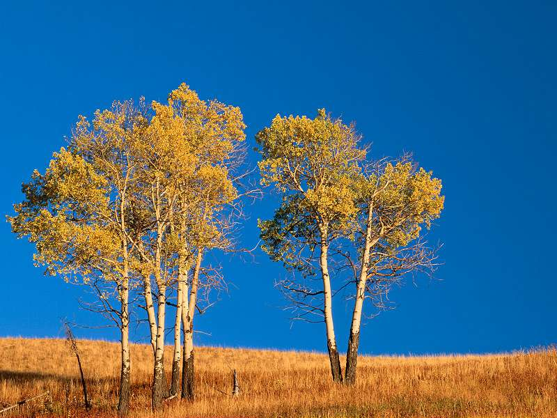 90 Poze cu peisaje - Imagini cu natura pentru sufletul tau 5