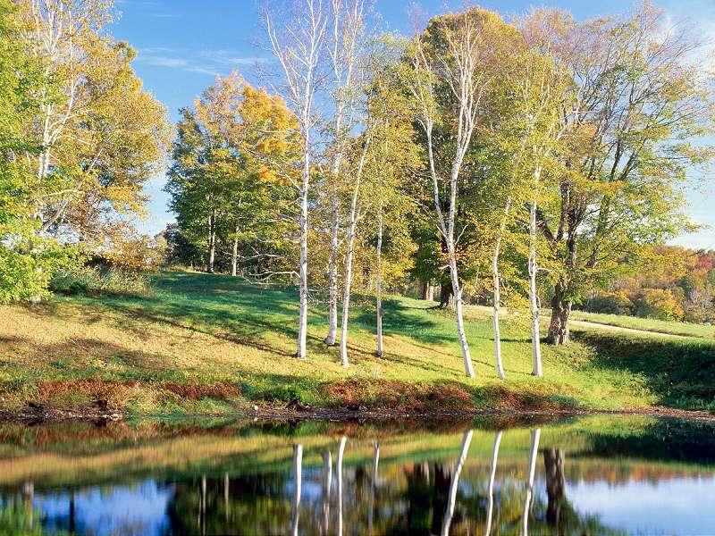 90 Poze cu peisaje - Imagini cu natura pentru sufletul tau 8