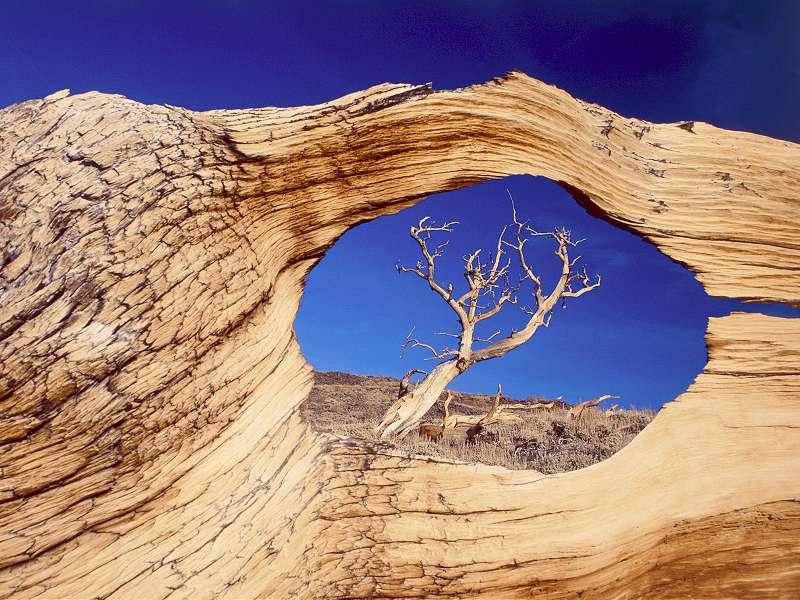 90 Poze cu peisaje - Imagini cu natura pentru sufletul tau 12