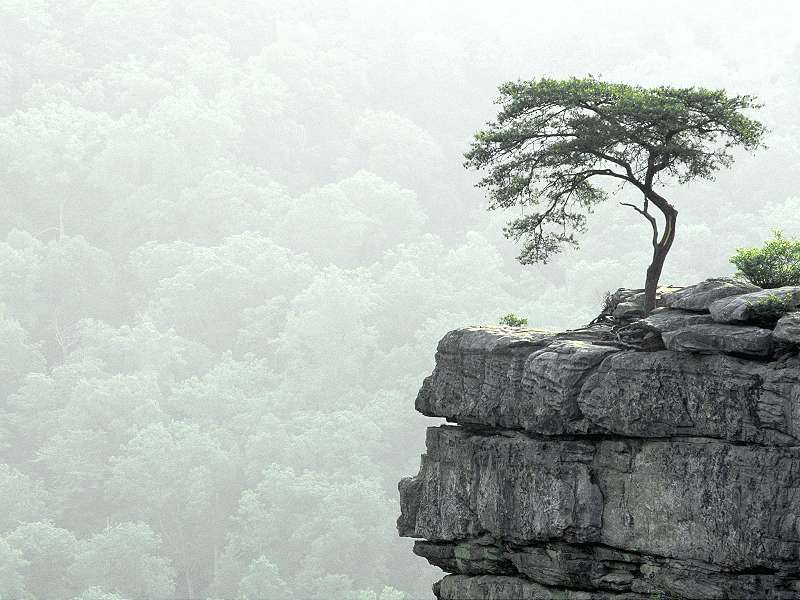 Imaginea thumbnail despre 90 Poze cu peisaje – Imagini cu natura pentru sufletul tau