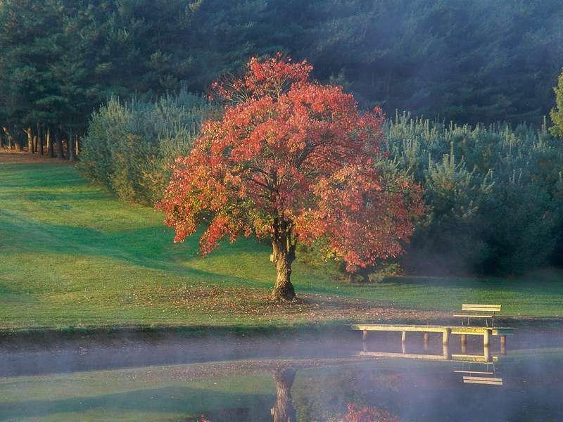 90 Poze cu peisaje - Imagini cu natura pentru sufletul tau 13