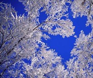 90 Poze cu peisaje - Imagini cu natura pentru sufletul tau 24