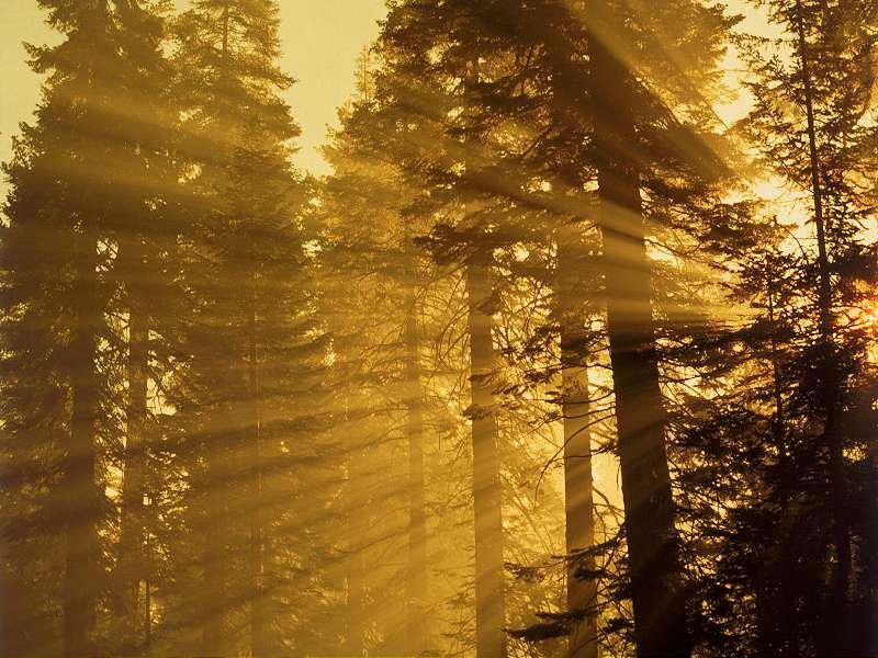 90 Poze cu peisaje - Imagini cu natura pentru sufletul tau 29