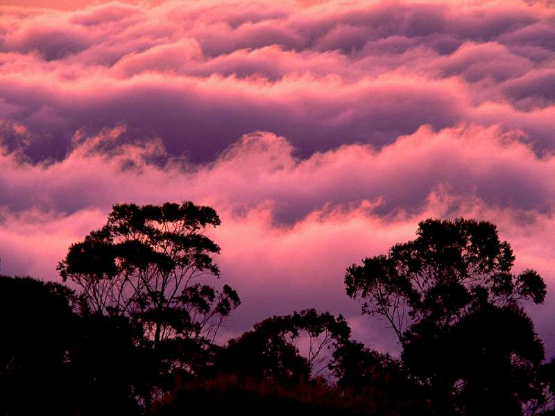 90 Poze cu peisaje - Imagini cu natura pentru sufletul tau 30