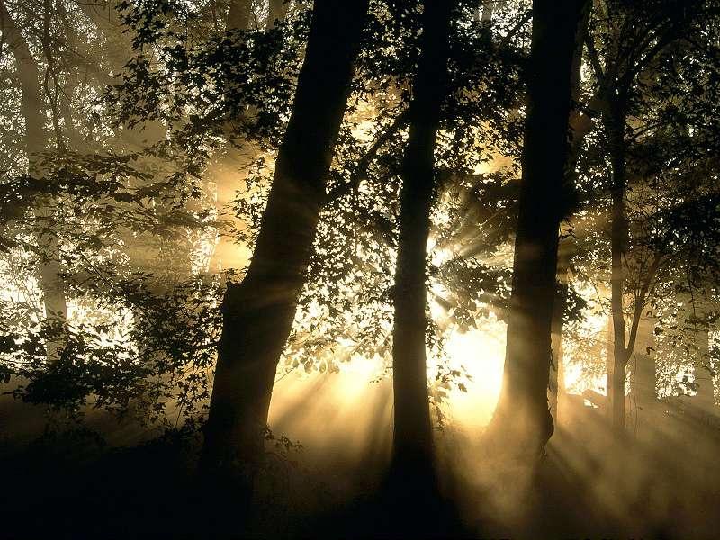 90 Poze cu peisaje - Imagini cu natura pentru sufletul tau 31