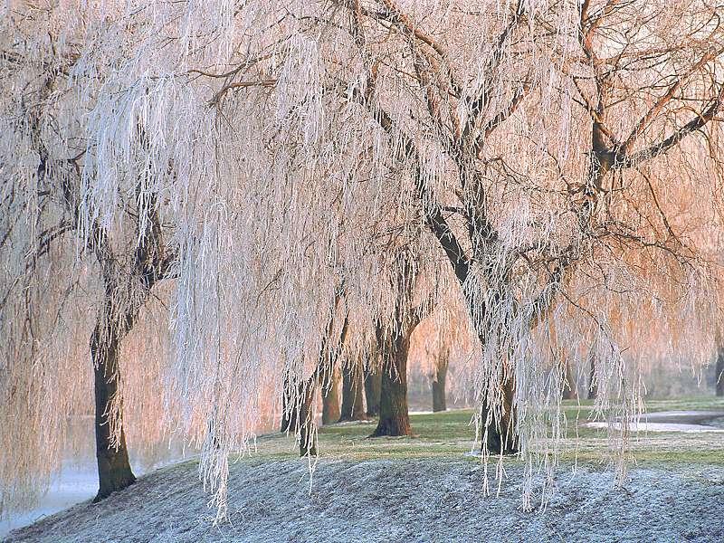 90 Poze cu peisaje - Imagini cu natura pentru sufletul tau 33