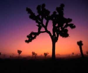 90 Poze cu peisaje - Imagini cu natura pentru sufletul tau 38