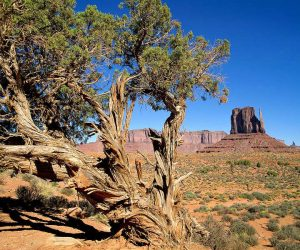 90 Poze cu peisaje - Imagini cu natura pentru sufletul tau 44