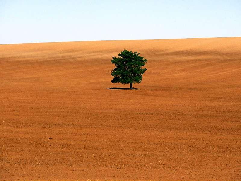 90 Poze cu peisaje - Imagini cu natura pentru sufletul tau 45