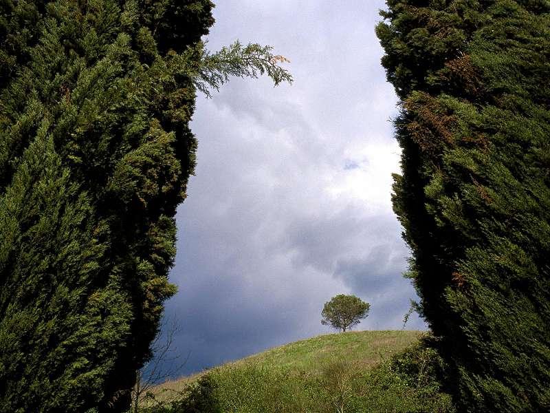 90 Poze cu peisaje - Imagini cu natura pentru sufletul tau 46