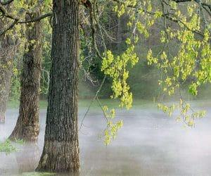 90 Poze cu peisaje - Imagini cu natura pentru sufletul tau 52