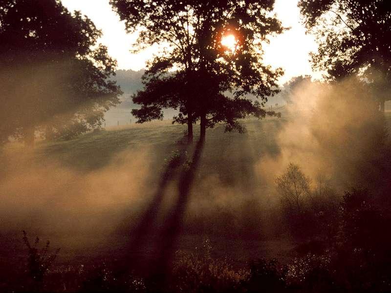 90 Poze cu peisaje - Imagini cu natura pentru sufletul tau 54
