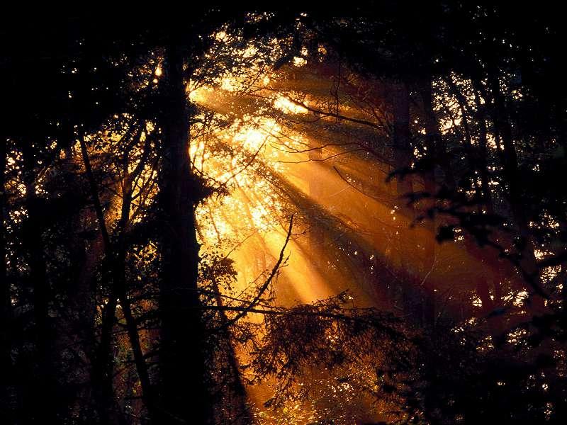 90 Poze cu peisaje - Imagini cu natura pentru sufletul tau 55