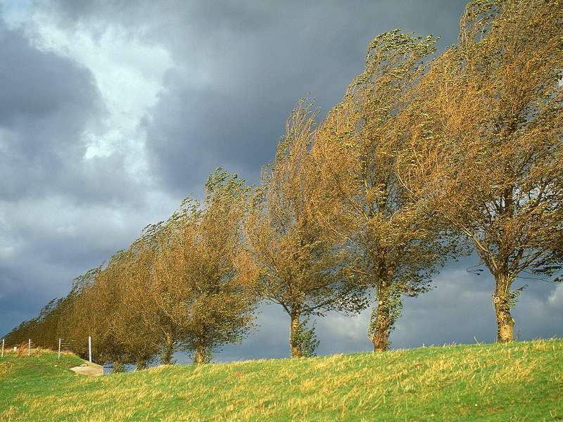 90 Poze cu peisaje - Imagini cu natura pentru sufletul tau 59