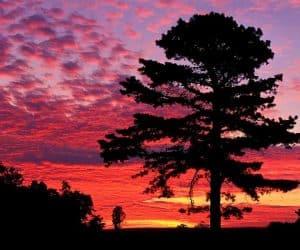 90 Poze cu peisaje - Imagini cu natura pentru sufletul tau 68