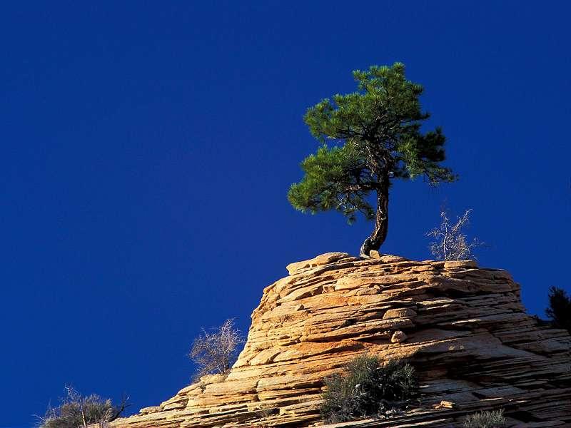 90 Poze cu peisaje - Imagini cu natura pentru sufletul tau 69