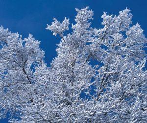 90 Poze cu peisaje - Imagini cu natura pentru sufletul tau 71