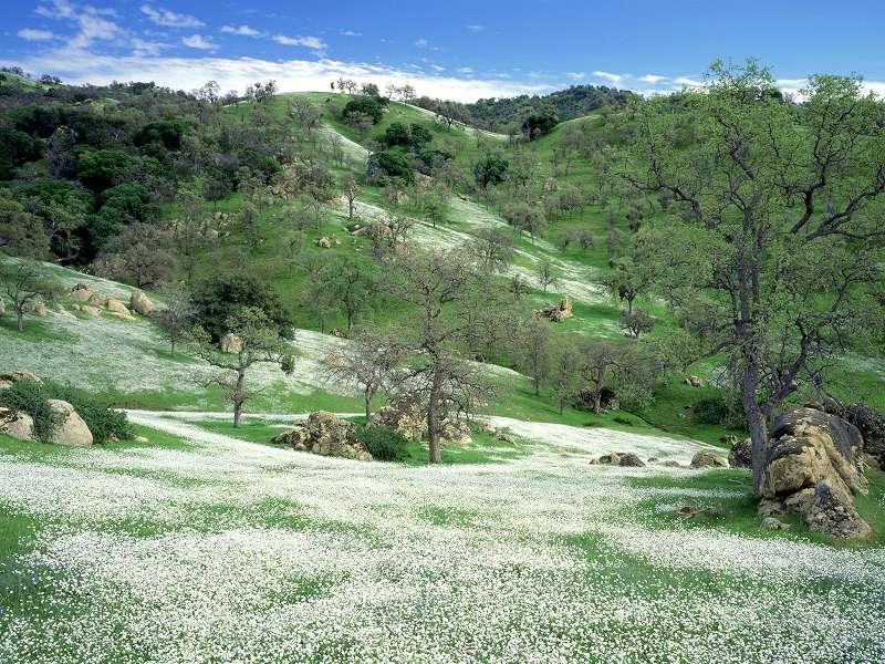 90 Poze cu peisaje - Imagini cu natura pentru sufletul tau 72