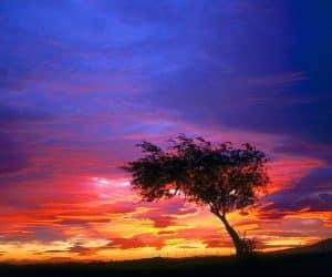 90 Poze cu peisaje - Imagini cu natura pentru sufletul tau 78