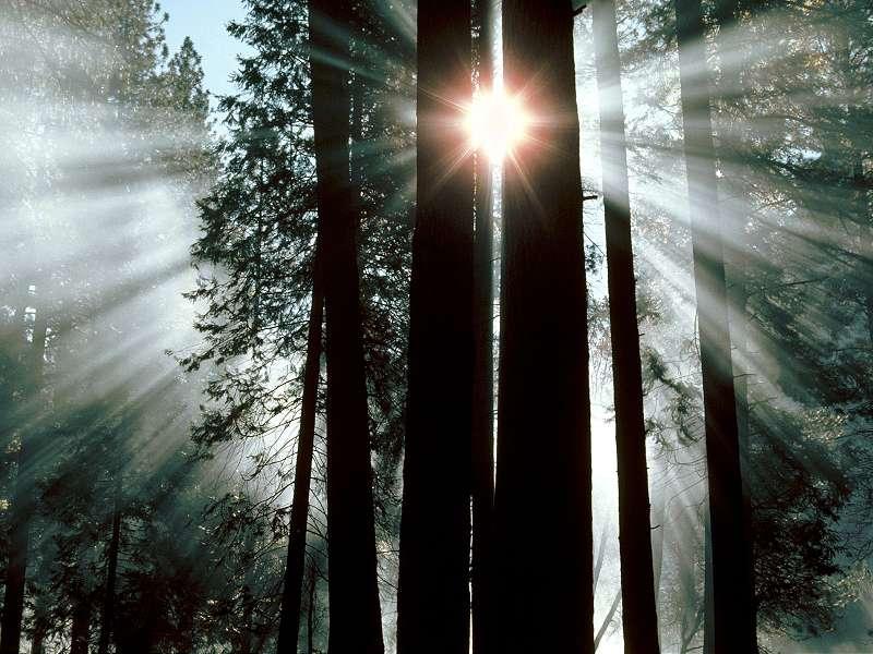 90 Poze cu peisaje - Imagini cu natura pentru sufletul tau 80