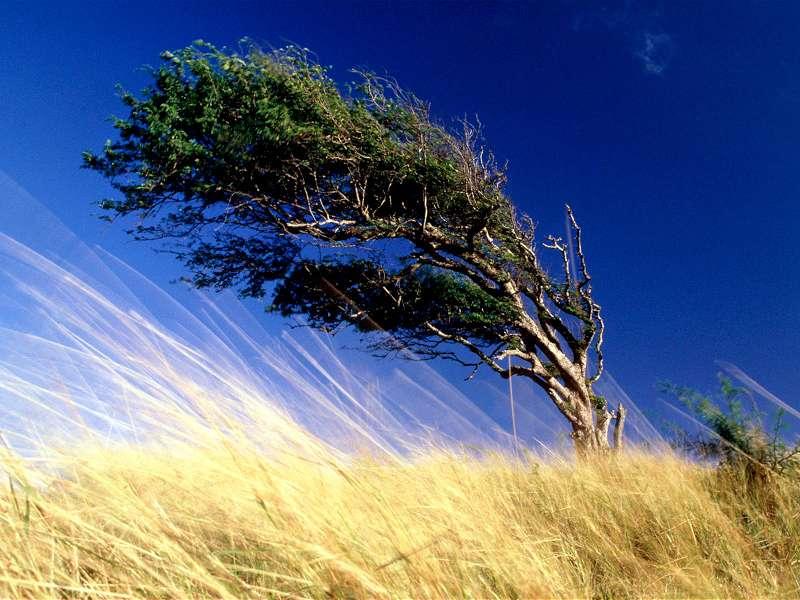 90 Poze cu peisaje - Imagini cu natura pentru sufletul tau 81