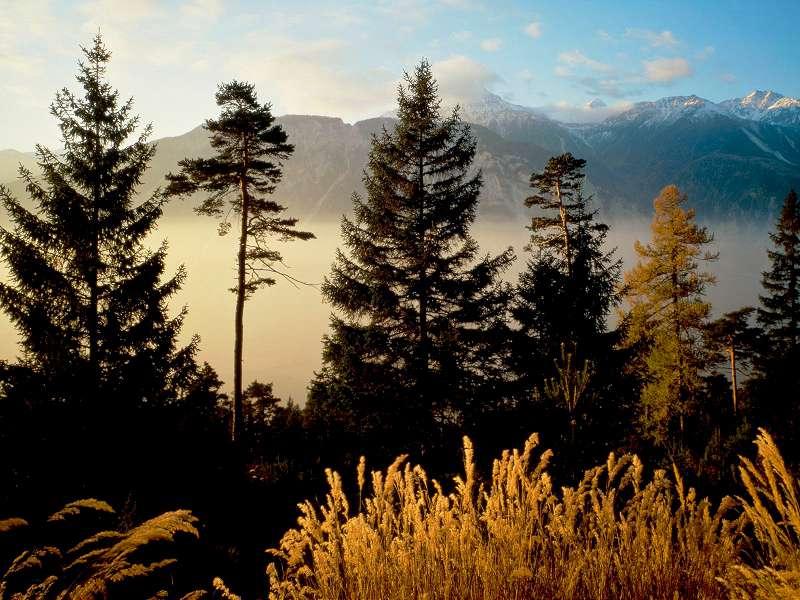 90 Poze cu peisaje - Imagini cu natura pentru sufletul tau 84