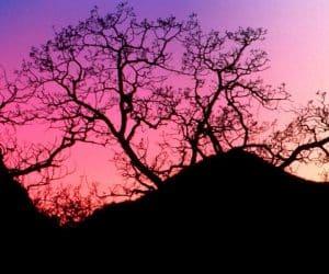 90 Poze cu peisaje - Imagini cu natura pentru sufletul tau 86