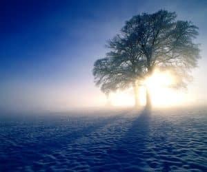 90 Poze cu peisaje - Imagini cu natura pentru sufletul tau 87