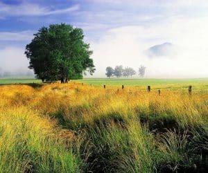 90 Poze cu peisaje - Imagini cu natura pentru sufletul tau 88