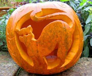 bostan-halloween-pisica