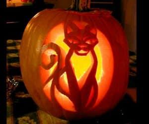 bostan scluptat pentru halloween model de pisica