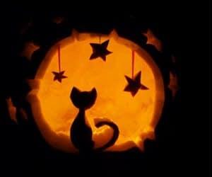 bostan de halloween cu pisica si stele