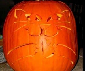 bostan de halloween scluptat cu cap de pisica