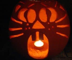 bostan de halloween decupat cu fata de pisica