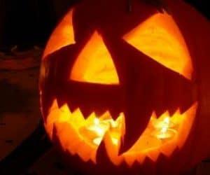 bostani halloween party