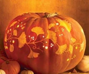 bostani ornamentali pentru halloween