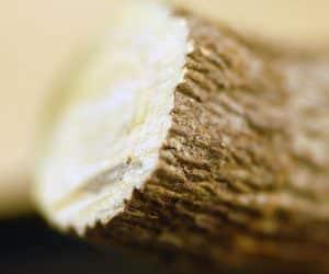 lemn dulce pentru stomac