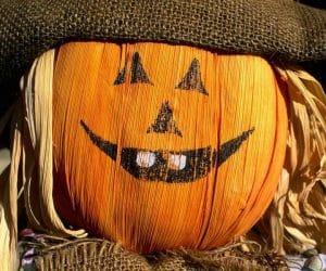 un fel de bostan de Halloween
