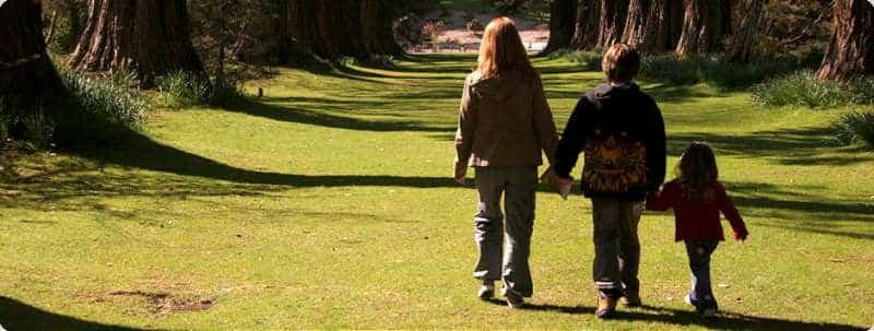 Imaginea thumbnail despre De ce copiii obosesc doar plimbându-se cu adulţii?