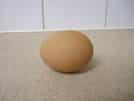 un ou