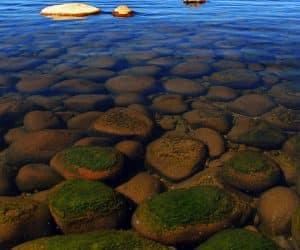 Baikalul un lac în criză 7