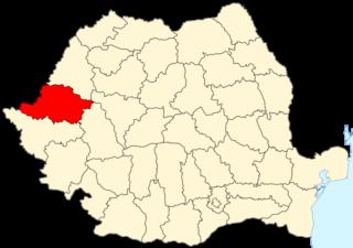 Arad County