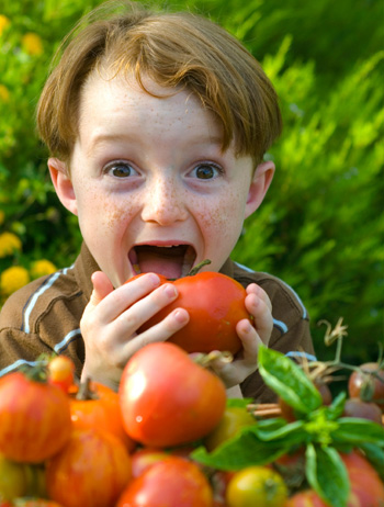 alimentatia naturala hrana vie