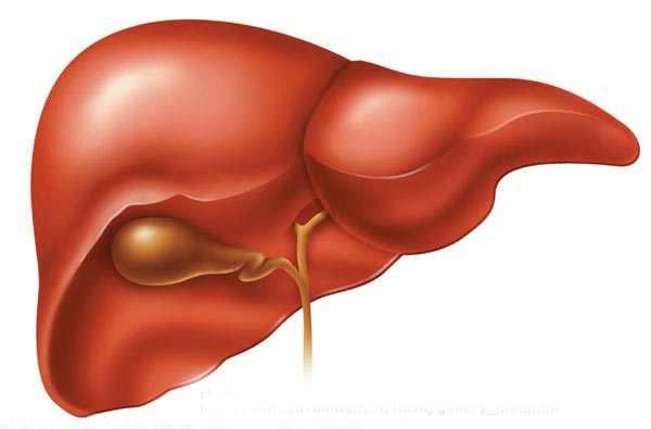 bolile hepatice ficatul