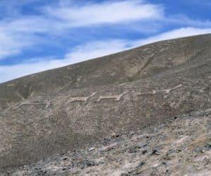 Geoglifele din Atacama, stravechi indicatoare rutiere? 3