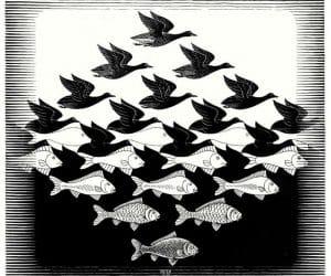 Galerie Iluzii optice - Pe cer si sub apa